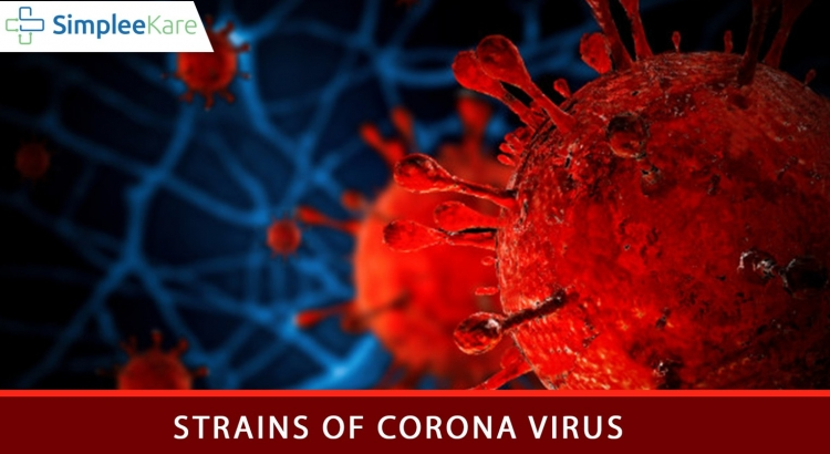 STRAINS OF CORONA VIRUS
